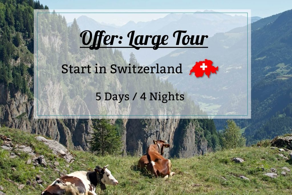 Offer large tour - Dents blanches